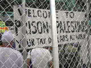Caged Protestors